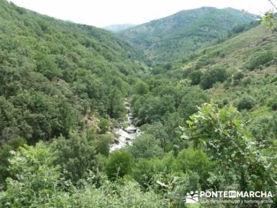 Parque Nacional Monfragüe - Reserva Natural Garganta de los Infiernos-Jerte;excursiones fin de año